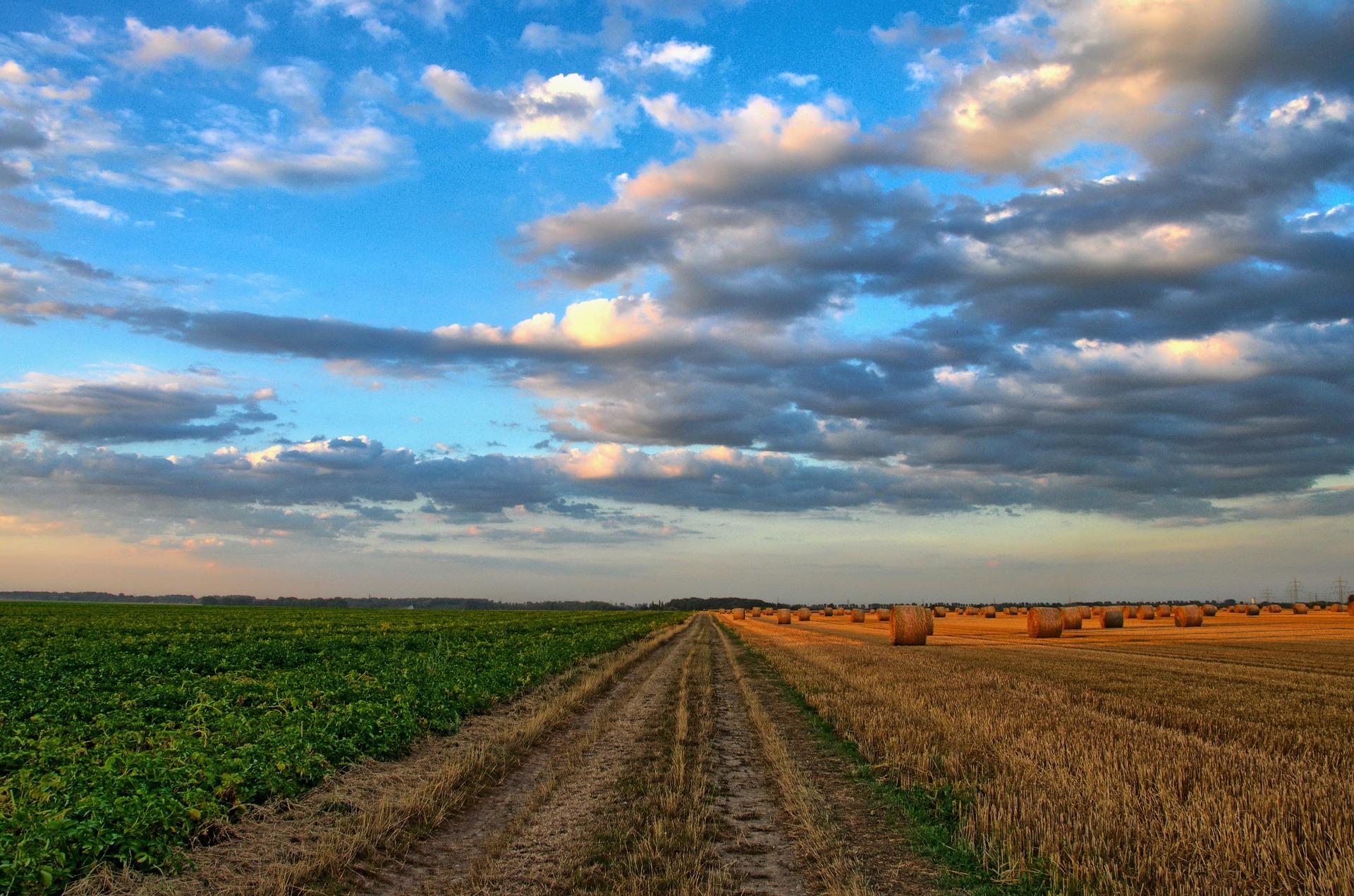 Ist unsere Landwirtschaft klimafest? Podiumsdiskussion in Simmern