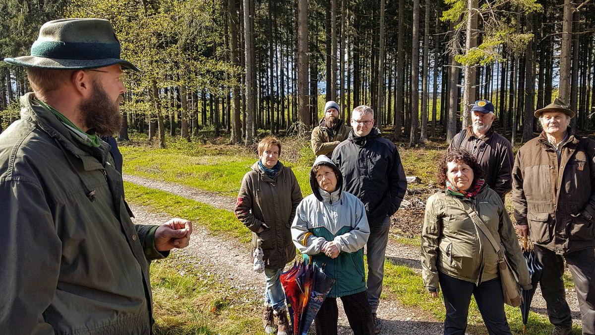 Klimawandel in Oberweseler Stadtwald sichtbar